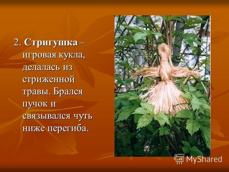 2. Стригушка – игровая кукла, делалась из стриженной травы. Брался пучок и связывался чуть ниже перегиба.