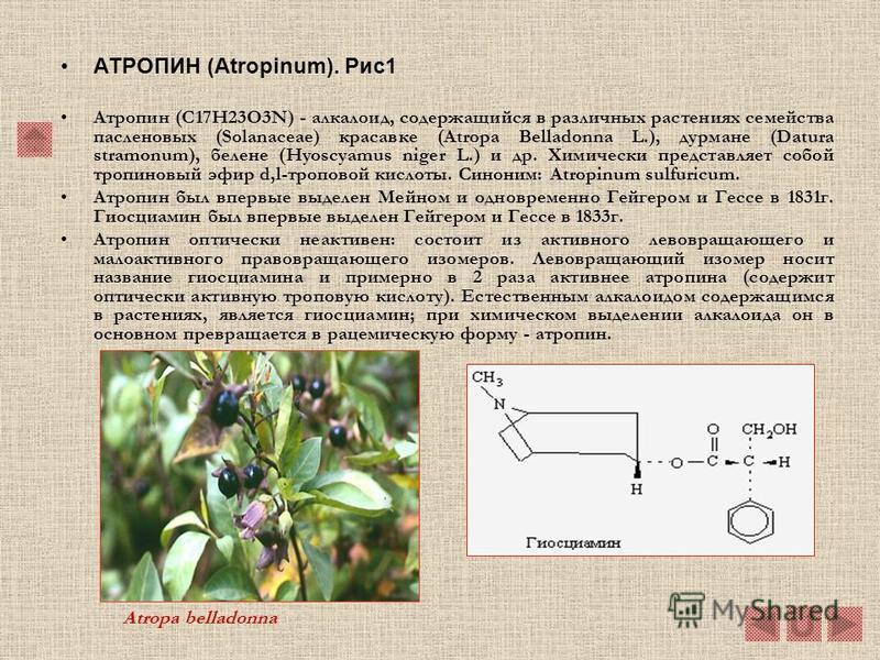 Алкалоиды крестовника. Алкалоиды крестовника представляют собой сложные эфиры содержащиеся в растениях обширного рода Senecio, но также и растениях видов Crotalaria и Heliotropium. Большинство алкалоидов крестовника очень токсичны. Особенно характерн