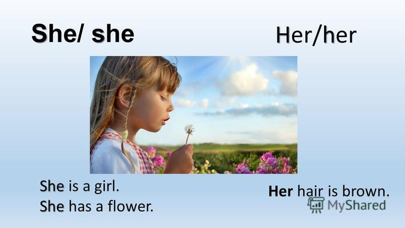 Ss She/ she Hh Her/her She She is a girl. She She has a flower. Her hair is brown.