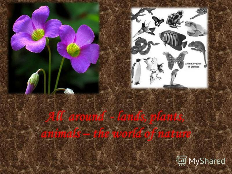 All around - lands, plants, animals – the world of nature