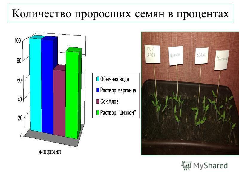 Количество проросших семян в процентах