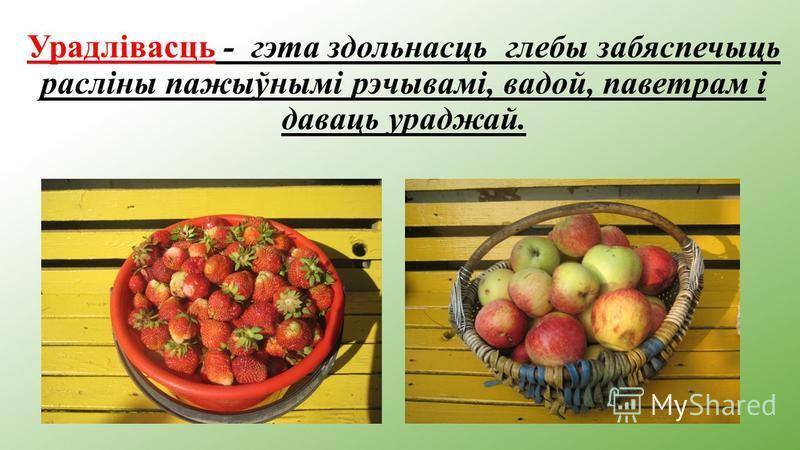 Урадлівасць - гэта здольнасць глебы забяспечыць расліны пажыўнымі рэчывамі, вадой, паветрам і даваць ураджай.