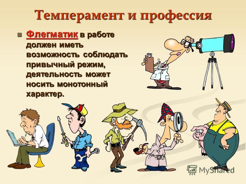 Флегматик в работе должен иметь возможность соблюдать привычный режим, деятельность может носить монотонный характер.
