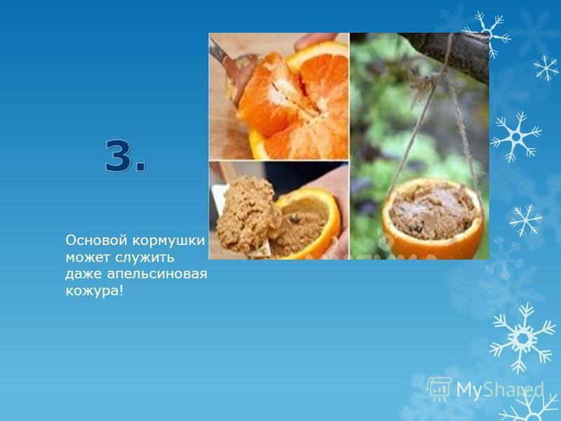 Основой кормушки может служить даже апельсиновая кожура!