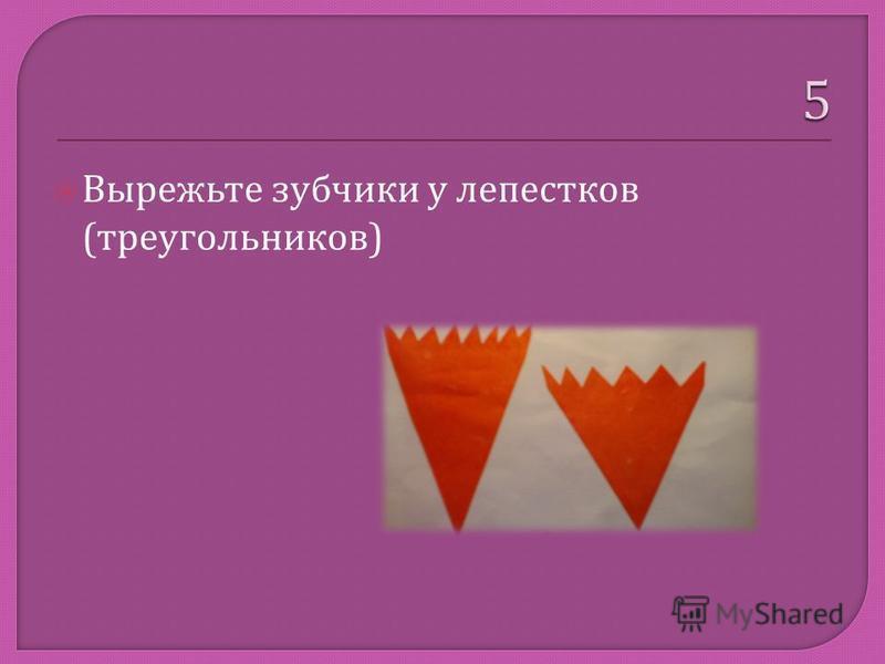 Вырежьте зубчики у лепестков ( треугольников )