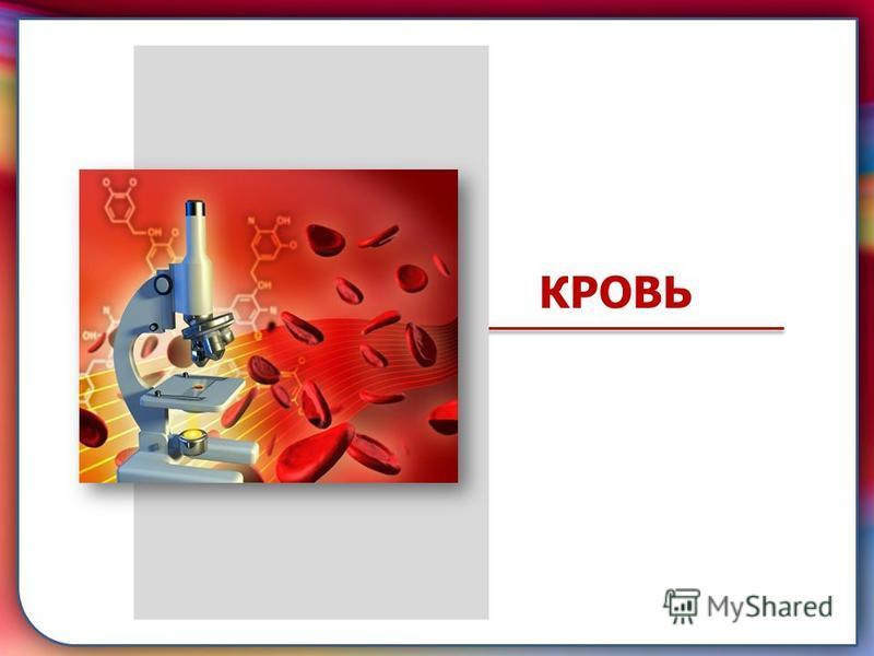 складками его внутренней оболочки, обеспечивает однонаправленный ток крови за счет перекрывания венозных и артериальных проходов КРОВЬ