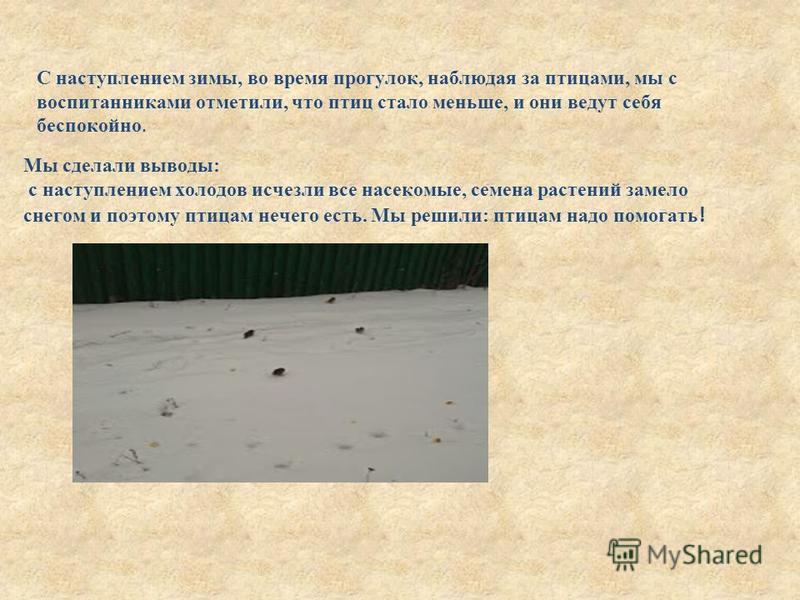 С наступлением зимы, во время прогулок, наблюдая за птицами, мы с воспитанниками отметили, что птиц стало меньше, и они ведут себя беспокойно. Мы сделали выводы: с наступлением холодов исчезли все насекомые, семена растений замело снегом и поэтому пт