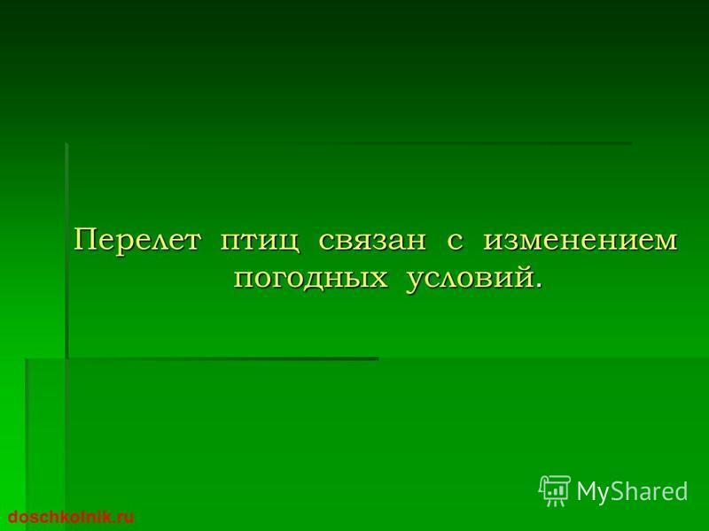 Перелет птиц связан с изменением погодных условий. doschkolnik.ru