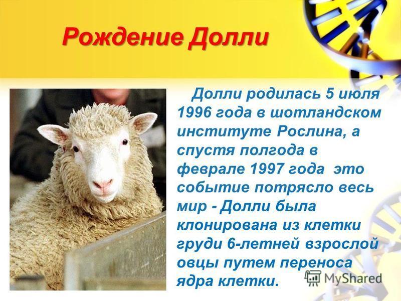 Рождение Долли Долли родилась 5 июля 1996 года в шотландском институте Рослина, а спустя полгода в феврале 1997 года это событие потрясло весь мир - Долли была клонирована из клетки груди 6-летней взрослой овцы путем переноса ядра клетки.