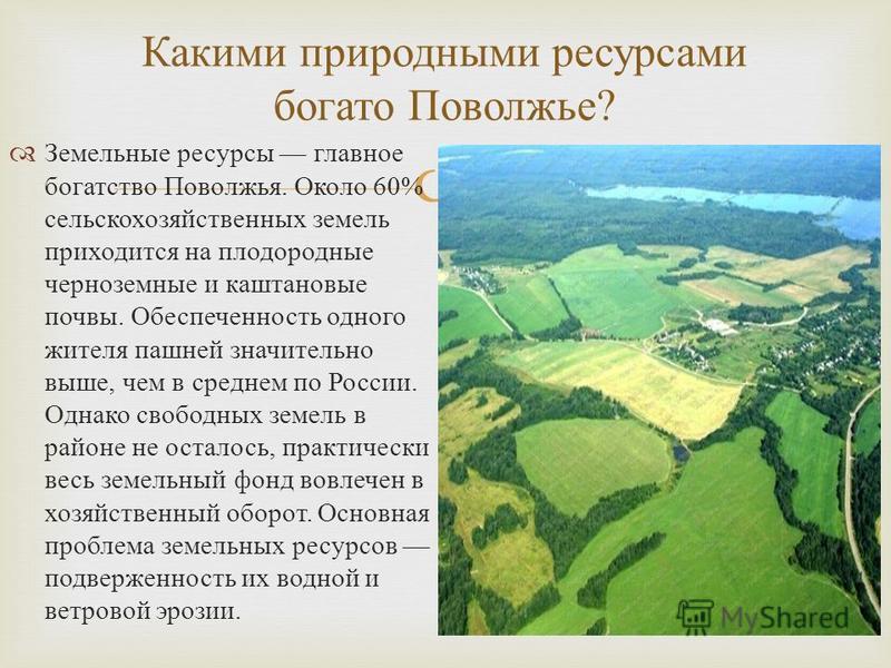 Земельные ресурсы главное богатство Поволжья. Около 60% сельскохозяйственных земель приходится на плодородные черноземные и каштановые почвы. Обеспеченность одного жителя пашней значительно выше, чем в среднем по России. Однако свободных земель в рай