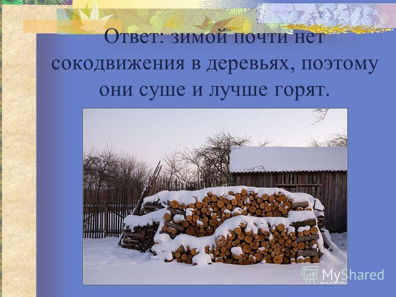 Ответ: зимой почти нет сокодвижения в деревьях, поэтому они суше и лучше горят.