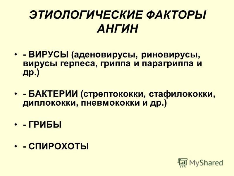 ЭТИОЛОГИЧЕСКИЕ ФАКТОРЫ АНГИН - ВИРУСЫ (аденовирусы, риновирусы, вирусы герпеса, гриппа и парагриппа и др.) - БАКТЕРИИ (стрептококки, стафилококки, диплококки, пневмококки и др.) - ГРИБЫ - СПИРОХОТЫ