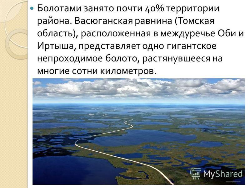 Болотами занято почти 40% территории района. Васюганская равнина ( Томская область ), расположенная в междуречье Оби и Иртыша, представляет одно гигантское непроходимое болото, растянувшееся на многие сотни километров.