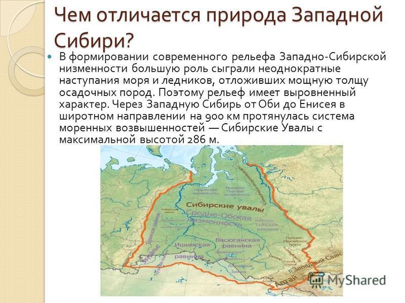 Чем отличается природа Западной Сибири ? В формировании современного рельефа Западно - Сибирской низменности большую роль сыграли неоднократные наступления моря и ледников, отложивших мощную толщу осадочных пород. Поэтому рельеф имеет выровненный хар