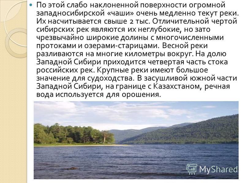 По этой слабо наклоненной поверхности огромной западносибирской « чаши » очень медленно текут реки. Их насчитывается свыше 2 тыс. Отличительной чертой сибирских рек являются их неглубокие, но зато чрезвычайно широкие долины с многочисленными протокам