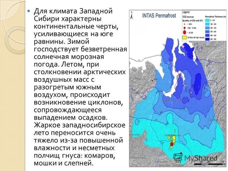 Для климата Западной Сибири характерны континентальные черты, усиливающиеся на юге равнины. Зимой господствует безветренная солнечная морозная погода. Летом, при столкновении арктических воздушных масс с разогретым южным воздухом, происходит возникно