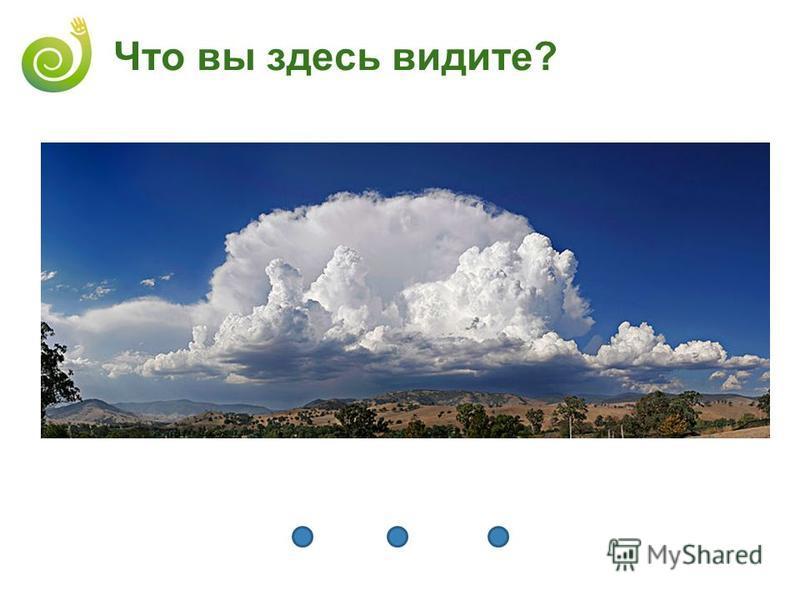 Что вы здесь видите?