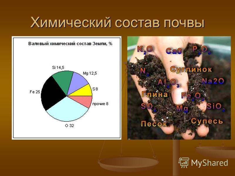 Химический состав почвы