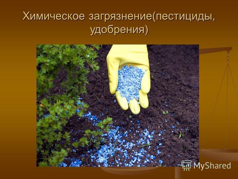 Химическое загрязнение(пестициды, удобрения)