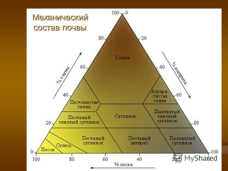 Механический состав почвы