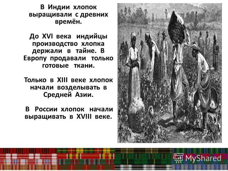 В Индии хлопок выращивали с древних времён. До XVI века индийцы производство хлопка держали в тайне. В Европу продавали только готовые ткани. Только в XIII веке хлопок начали возделывать в Средней Азии. В России хлопок начали выращивать в XVIII веке.