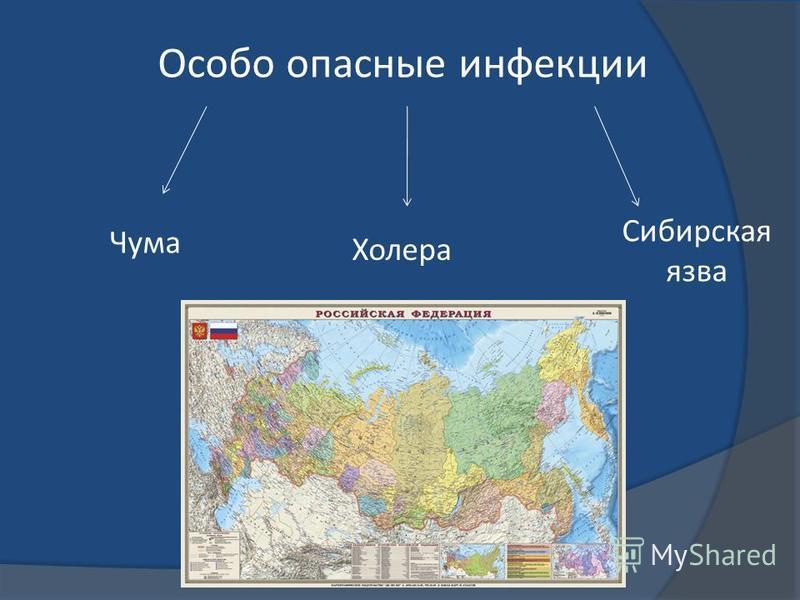 Особо опасные инфекции Чума Сибирская язва Холера