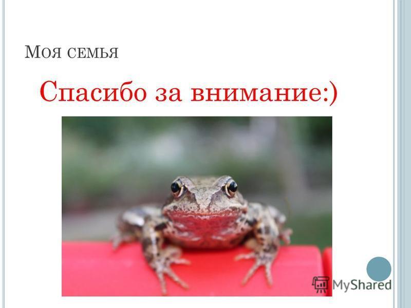 М ОЯ СЕМЬЯ Спасибо за внимание:)