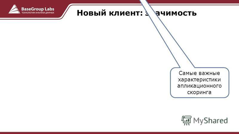 Новый клиент: значимость Самые важные характеристики аппликационного скоринга