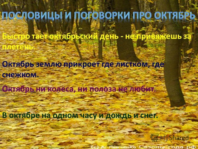 Гром в октябре предвещает бесснежную, короткую и мягкую зиму. Листопад прошел быстро - зима будет суровой, а если листья остаются зелеными и долго держатся на деревьях - зима будет короткая, с небольшими морозами. Теплый октябрь предсказывает морозну