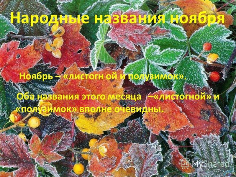 Природа скинула наряды, Стоят деревья без листвы, Седые, плотные туманы, К нам в этом месяце пришли! Дождь сменяется снежком, Дует ветер за окном, Грусть по воздуху витает, Как же месяц называют? (Ноябрь)