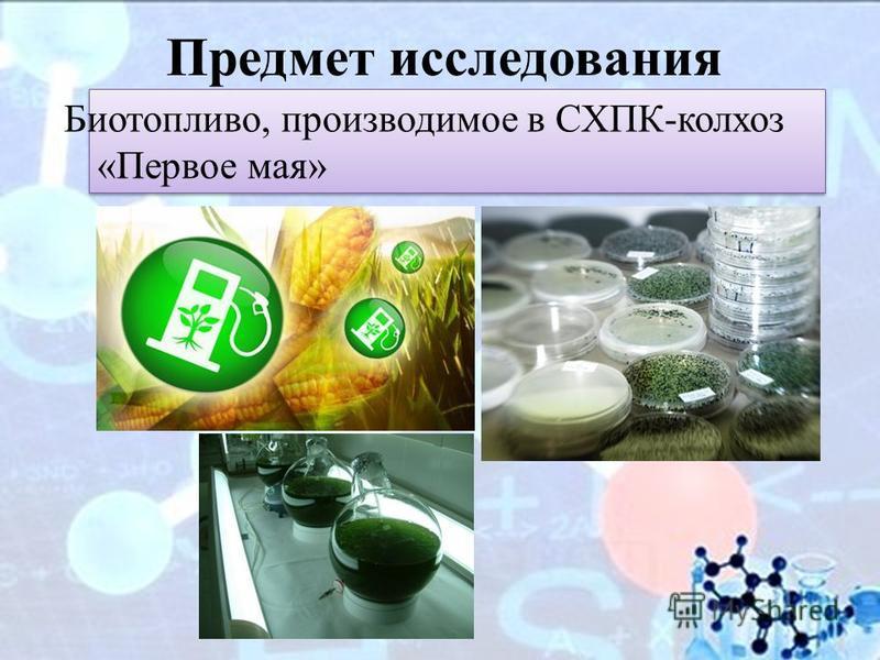 Предмет исследования Биотопливо, производимое в СХПК-колхоз «Первое мая»