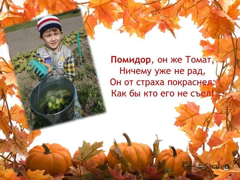 Помидор, он же Томат, Ничему уже не рад, Он от страха покраснел: Как бы кто его не съел!