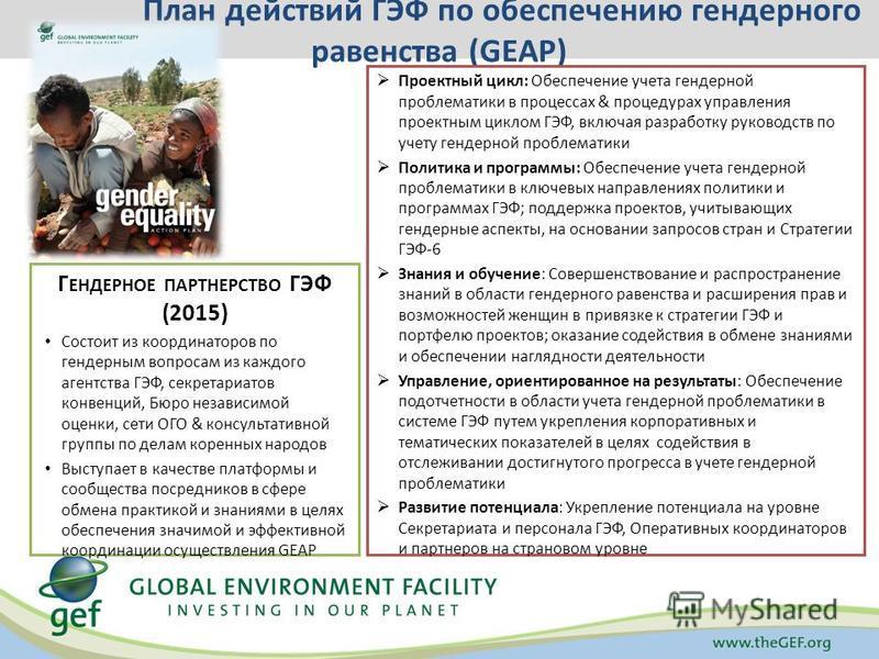 План действий ГЭФ по обеспечению гендерного равенства (GEAP) Проектный цикл: Обеспечение учета гендерной проблематики в процессах & процедурах управления проектным циклом ГЭФ, включая разработку руководств по учету гендерной проблематики Политика и п