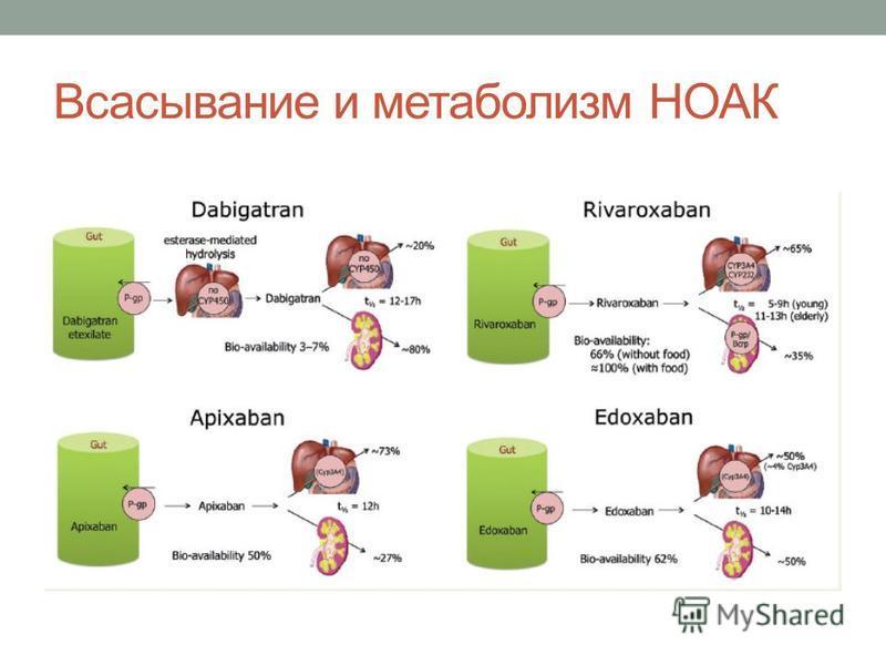 Всасывание и метаболизм НОАК