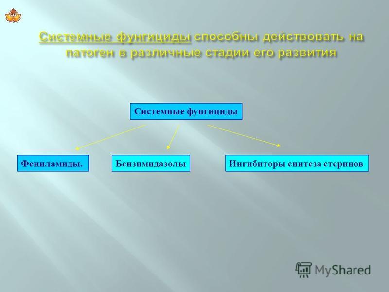 Фениламиды.Бензимидазолы Ингибиторы синтеза стеринов Системные фунгициды