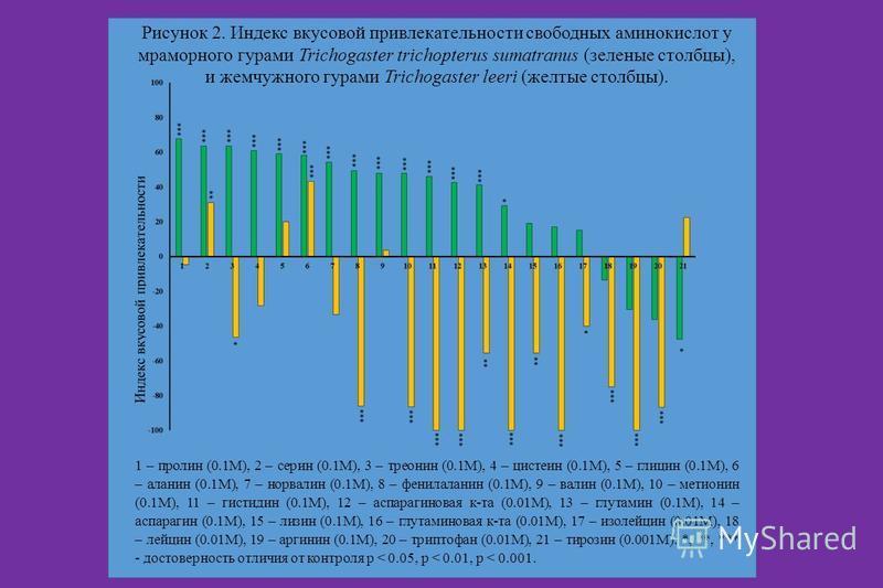 Рисунок 2. Индекс вкусовой привлекательности свободных аминокислот у мраморного гурами Trichogaster trichopterus sumatranus (зеленые столбцы), и жемчужного гурами Trichogaster leeri (желтые столбцы). 1 – пролин (0.1М), 2 – серин (0.1М), 3 – треонин (