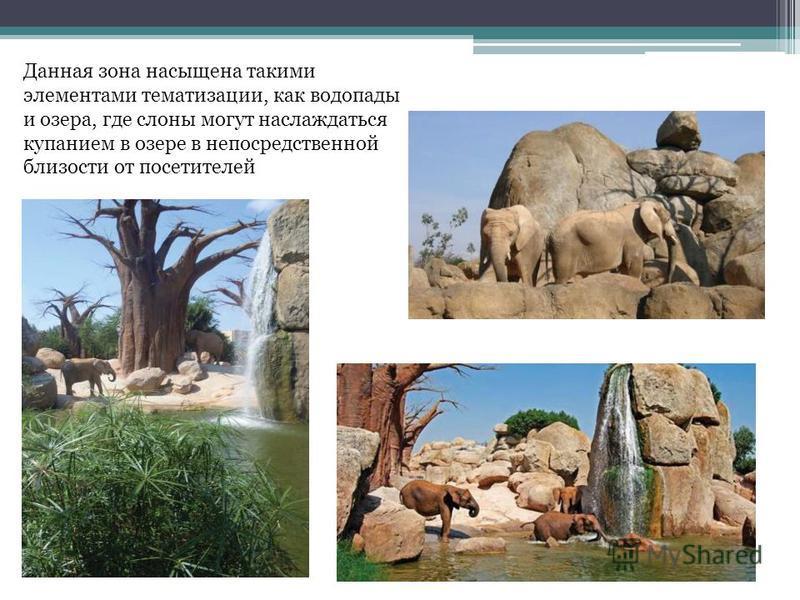 Данная зона насыщена такими элементами тематизации, как водопады и озера, где слоны могут наслаждаться купанием в озере в непосредственной близости от посетителей