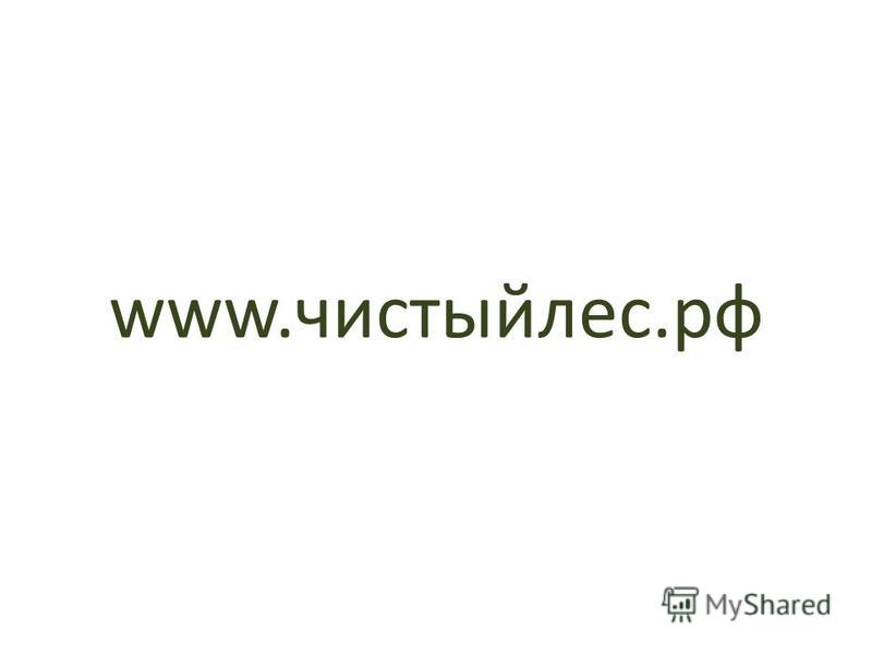 www.чистыйлес.рф