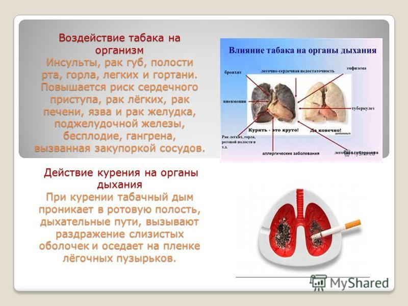 Воздействие табака на организм Инсульты, рак губ, полости рта, горла, легких и гортани. Повышается риск сердечного приступа, рак лёгких, рак печени, язва и рак желудка, поджелудочной железы, бесплодие, гангрена, вызванная закупоркой сосудов. Действие
