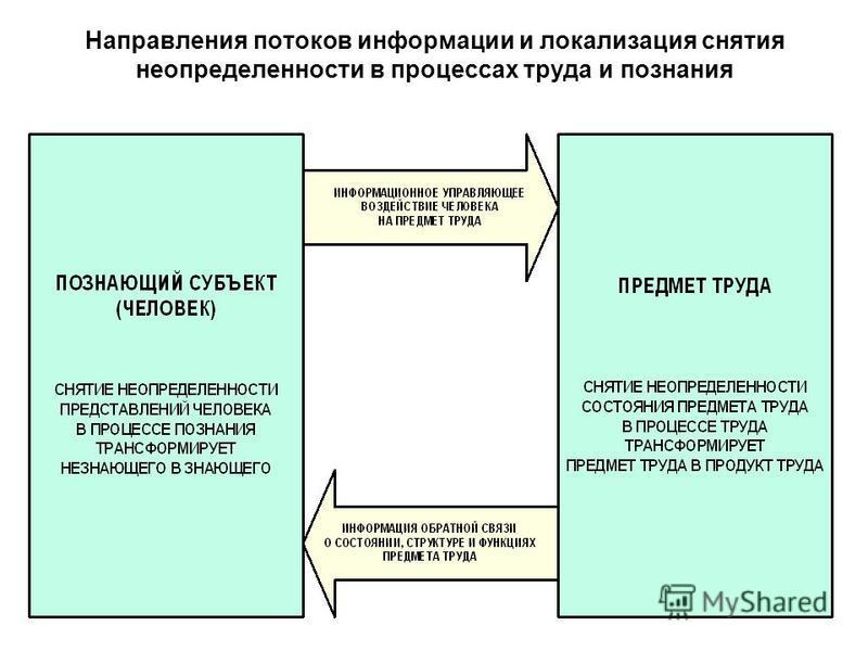 Направления потоков информации и локализация снятия неопределенности в процессах труда и познания