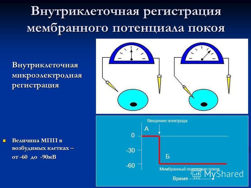 15 Внутриклеточная регистрация мембранного потенциала покоя Внутриклеточная микроэлектродная регистрация Величина МПП в возбудимых клетках – Величина МПП в возбудимых клетках – от -60 до -90 мВ А Б 0 -30 -60 Введение электрода Мембранный потенциал по