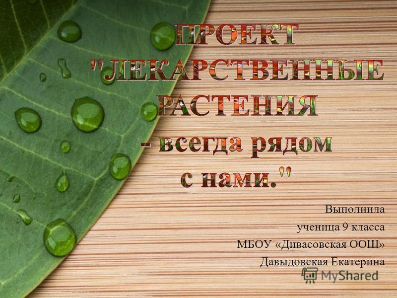 Выполнила ученица 9 класса МБОУ «Дивасовская ООШ» Давыдовская Екатерина