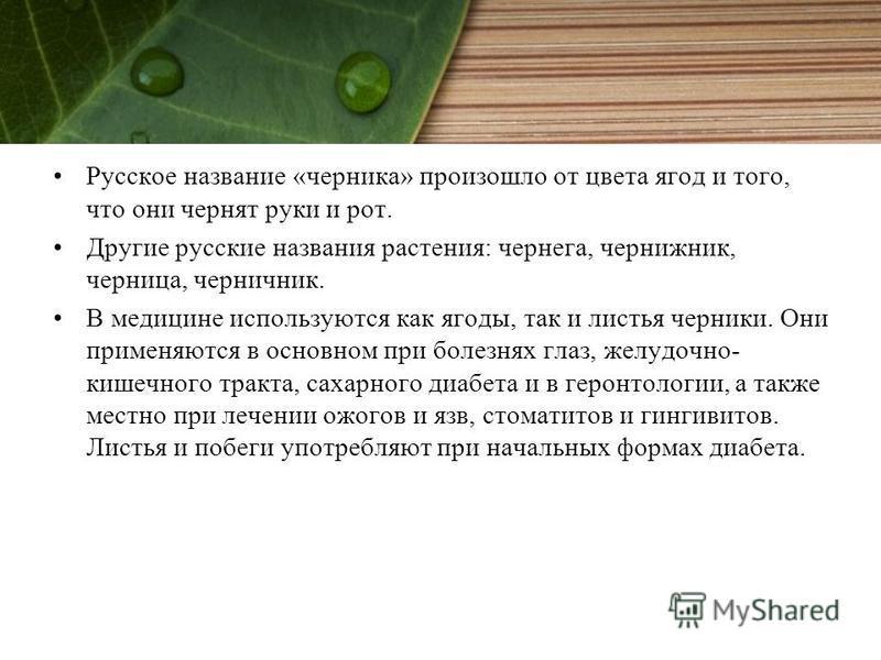 Русское название «черника» произошло от цвета ягод и того, что они чернят руки и рот. Другие русские названия растения: чернега, чертежник, черница, черничник. В медицине используются как ягоды, так и листья черники. Они применяются в основном при бо