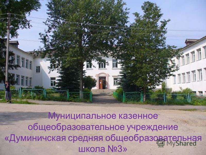 Муниципальное казенное общеобразовательное учреждение «Думиничская средняя общеобразовательная школа 3»