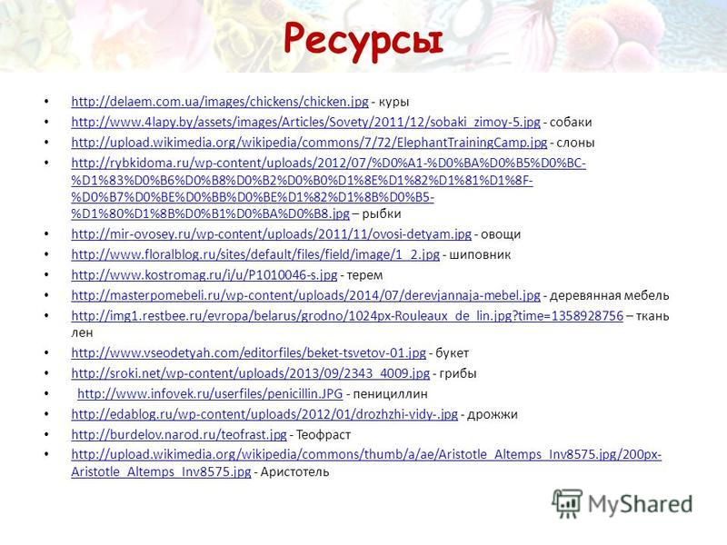 Ресурсы http://delaem.com.ua/images/chickens/chicken.jpg - куры http://delaem.com.ua/images/chickens/chicken.jpg http://www.4lapy.by/assets/images/Articles/Sovety/2011/12/sobaki_zimoy-5. jpg - собаки http://www.4lapy.by/assets/images/Articles/Sovety/