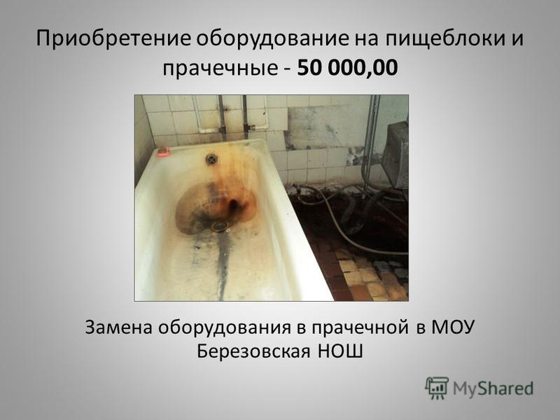 Приобретение оборудование на пищеблоки и прачечные - 50 000,00 Замена оборудования в прачечной в МОУ Березовская НОШ