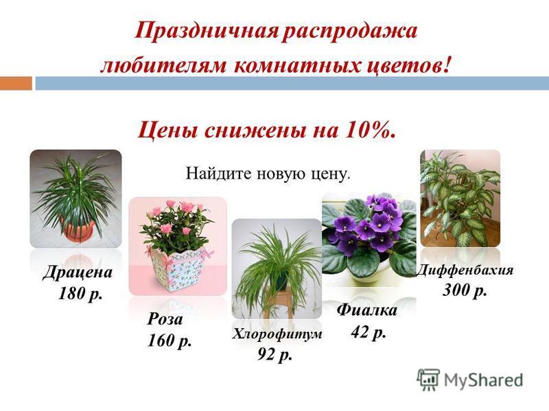 Праздничная распродажа любителям комнатных цветов! Цены снижены на 10%. Драцена 180 р. Роза 160 р. Фиалка 42 р. Хлорофитум 92 р. Диффенбахия 300 р. Найдите новую цену.