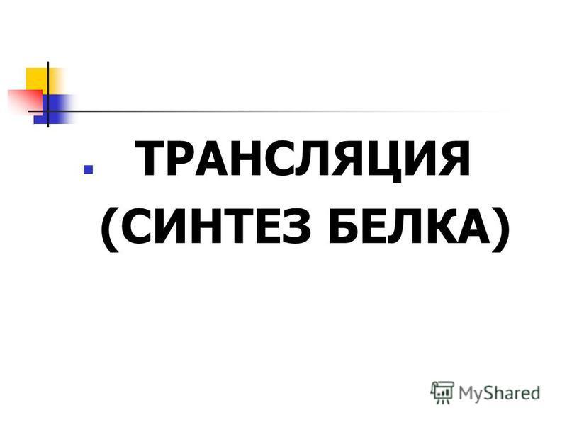 ТРАНСЛЯЦИЯ (СИНТЕЗ БЕЛКА)