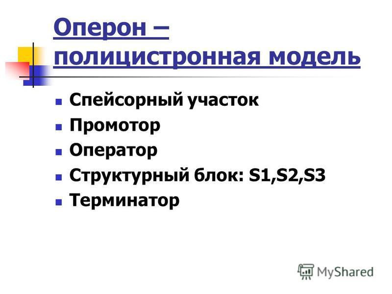 Оперон – полицистронная модель Спейсорный участок Промотор Оператор Структурный блок: S1,S2,S3 Терминатор