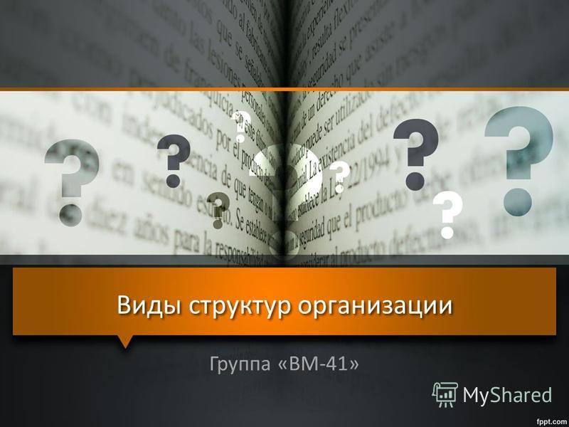 Виды структур организации Группа «ВМ-41»